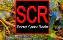 scr logos