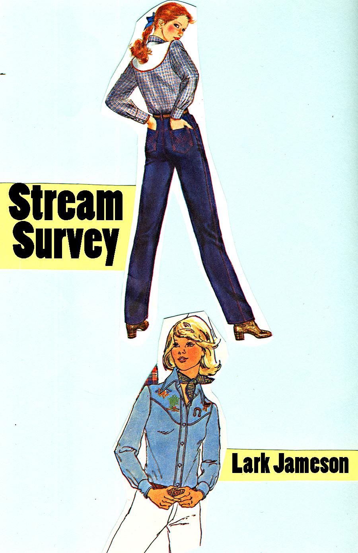 smutstreamsurvey2